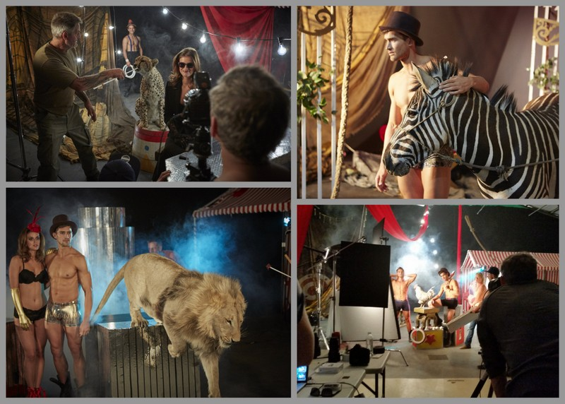 Prinz Productions - wild animals on set Cape Town 2016